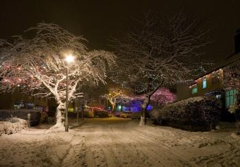 """Christmas lights Abbeydale Park Rise"