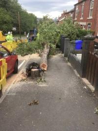 """""""Health & safety breach - Myrtle Road"""