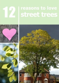 """12 reasons to love street trees"