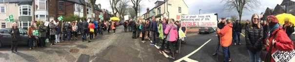 """200 gather to celebrate Western Road memorial trees"